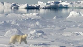 Rendez-vous Serie Aufbruch in die Arktis