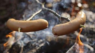 Cervelatbräteln in Zürcher Wäldern wieder erlaubt