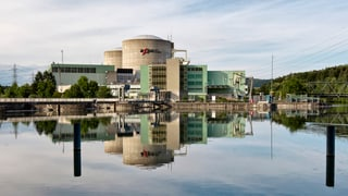 Experts independents duain examinar ovra atomara Beznau