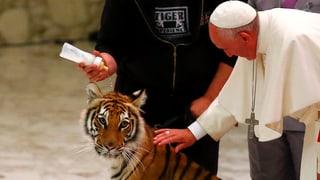 Tierischer Auftritt: Was für ein Zirkus im Vatikan