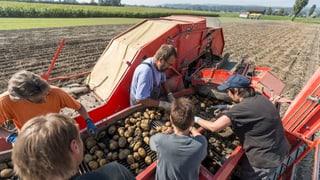 Bauernverband und SVP einigen sich auf gemeinsame Initiative
