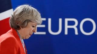 «Brexit means Brexit» – zumindest für die Regierung
