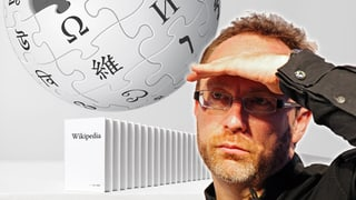 Wikipedia: Das Werk eines Versagers
