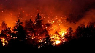 Als der Wald bei Leuk brannte