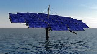 Solar-Seerose still und leise im Stausee versunken