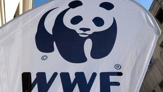 Happige Vorwürfe gegen den WWF