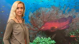 Fondation Weber sagt Ozeanium mit «Nemo» den Kampf an