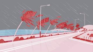 Infografik: So gefährlich ist Hurrikan «Michael»