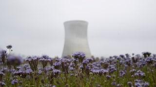 Svizzers n'han betg tema d'ina catastrofa atomara