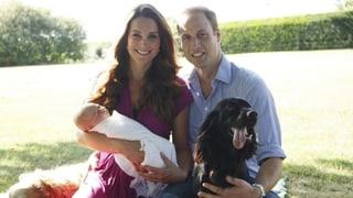 «Uäääh!»: Diese Promi-Babys kamen 2013 zur Welt