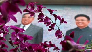 Fest-Video: So farbig könnte Nordkorea sein