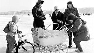 Die Bodenseegfrörni 1963  – ein Jahrhundertereignis