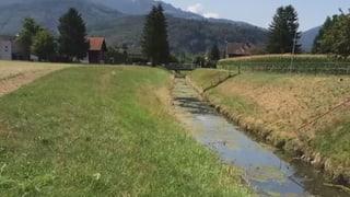 Bauern verschmutzen Bäche – Kantone schauen weg