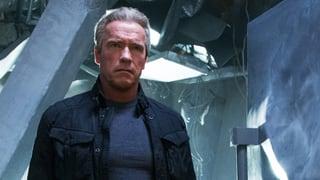 Arnie rettet uns vor der total vernetzten Zukunft