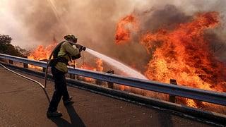California: Almain 50 persunas èn mortas en las flommas