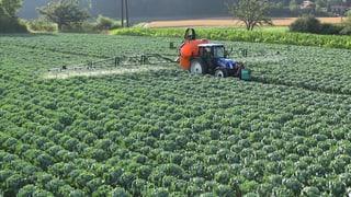 Video «Pestizide – unheimlich wirksam: Wie Natur verschwindet (1/3)» abspielen