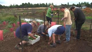 Urs Wälterlin krempelt seine Gemeinde um (Artikel enthält Video)