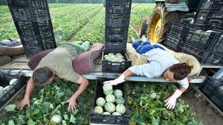Zuwanderung: Nationalräte suchen nach Ei des Kolumbus