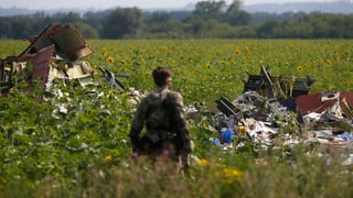 USA: «Rakete auf MH17 wurde im Rebellengebiet abgefeuert»