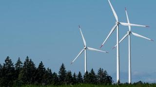 Neuer Schub für Windprojekt im Grenzgebiet Aargau Luzern