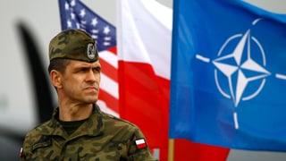 Polen vertraut im Notfall auf die USA