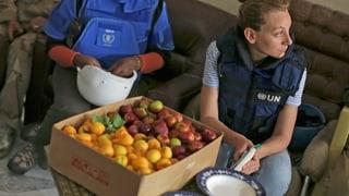Essensrationen für syrische Flüchtlinge werden halbiert