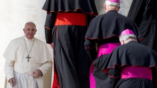 «Der Papst will retten, was noch zu retten ist»