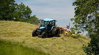 Bauern sollen weniger Direktzahlungen erhalten