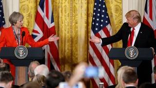 «Trump bekennt sich zu 100 Prozent zur Nato»