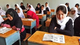 Zartes Pflänzchen Bildung in Afghanistan