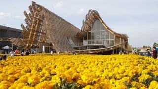 400'000 Besucher am ersten Expo-Wochenende