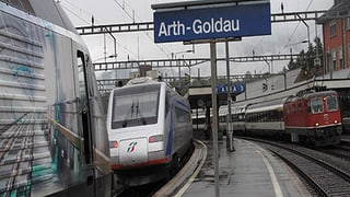 In Arth-Goldau wird Verkehrschaos befürchtet