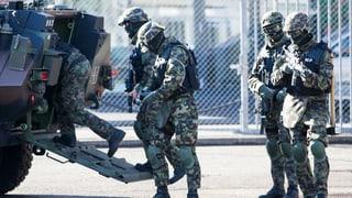 Bund schliesst Armee-Einsatz an Grenze bei Basel nicht mehr aus