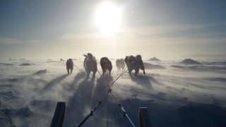 Goldgräberstimmung in der Arktis