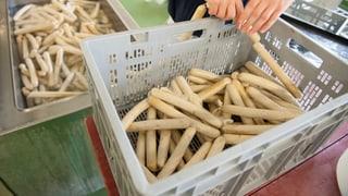 EU-Veganer dürfen keine «Vegi-Wurst» mehr essen