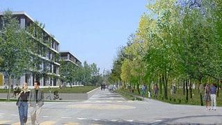 Städtewachstum: Solothurner Gemeinderat beweist Weitblick