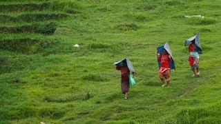 Dutzende Tote in Nepal nach Monsunregen