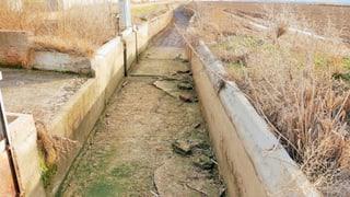 Der Tajo: trauriger Fluss in einem trockenen Land