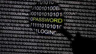 Globale Cyberattacke: «Epic Turla»