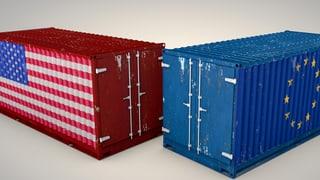 «Werden überall Zölle eingeführt, muss die Schweiz mitziehen»