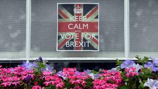 Könnte das Parlament den Brexit verhindern?