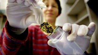 Cannabis als Arznei: Kaum umstritten, kaum genutzt
