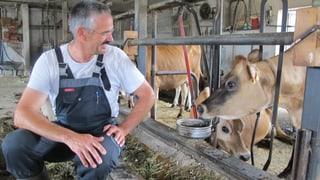 Zürcher Bauern: Umsatteln wegen neuem Tierschutzgesetz