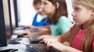 Neue Fächer, enger Zeitplan: Der Zürcher Bildungsrat schlägt die Pflöcke für den neuen Lehrplan ein.