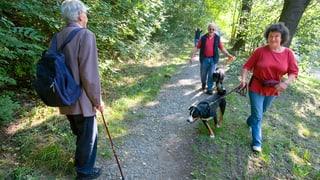 Verschiedene Regeln zur Leinenpflicht in Kantonen Aargau und Solothurn