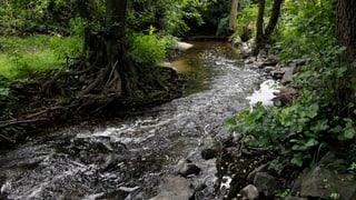 Thurgau: Wasserentnahmeverbot bleibt