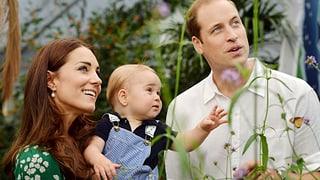 Neue Haushaltsfee für William und Kate