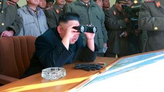 «Nordkorea akzeptieren, wie es ist»