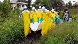Ebola ist in der Welt der Mächtigen angekommen