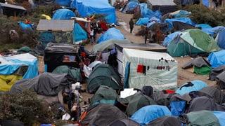 «Die Ratlosigkeit der Behörden in Calais ist offensichtlich»